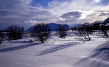 Bild Dovre/Rondane